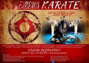 plakat karate